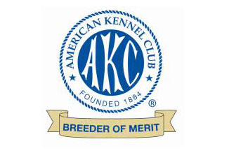 AKC breeder Illinois