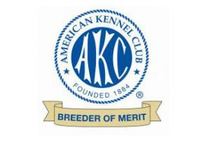 GSD breeder of merit from the AKC