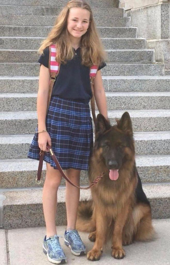 German Shepherd long coat with child